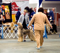 090312 Mid Kentucky Kennel Club