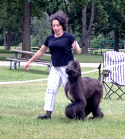060901 Greater Detroit Afghan Hound Club