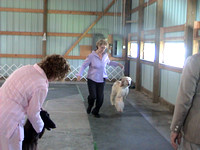 030914 Greater LaFayette Kennel Club