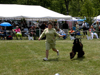 040530 Afghan Hound Club of Greater Detroit