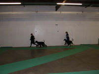 040606 McKinley Kennel Club
