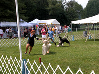 040905 Clermont County Kennel Club