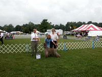 040829 Northern Kentucky Kennel Club