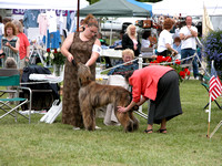 040529 Greater Detroit Afghan Hound Club
