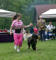 060609 Afghan Hound Club of Greater Chicago